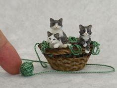 Dollhouse Miniature Kittens by Kerri Pajutee *IGMA OOAK Cat