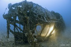 Underwerwater photo sunk S-Boat World War II by Steve Jones     Steve Jones  The S-boats were built for speed, constructed of a mahogany outer hull and light metal frame, but the wood has long since rotted away, giving this one its dragon-like appearance.