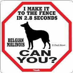 Belgian Malinois 2.8 Seconds Sign,$6.95