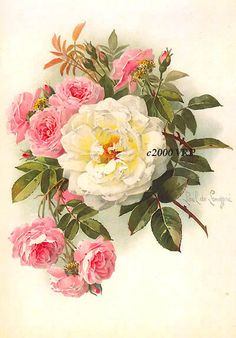 PRINT FREE SHIP Victorian Morning Roses by VictorianRosePrints, $10.95