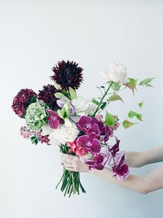 Flowers | The Garden Edit