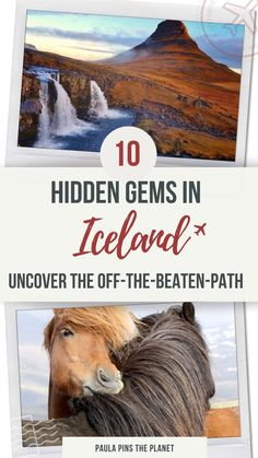Guide To Iceland, Iceland Travel Tips, Europe Travel Guide, Travel Guides, Best Places To Travel, Cool Places To Visit, Amazing Destinations, Travel Destinations, Adventure Travel