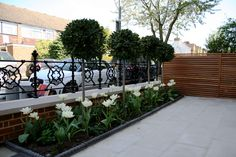 Designed and landscaped London front garden with raving, flowers, bushes, railings and wall. Front Garden Entrance, Front Garden Ideas Driveway, Victorian Front Garden, Victorian Terrace, Garden Railings, Small Front Gardens, Small Garden Design, House Front, London