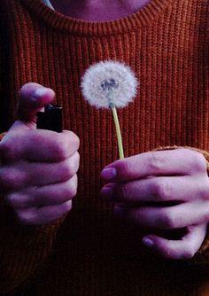 """""""En otra vida fuiste canción, eso dicen mis manos"""""""