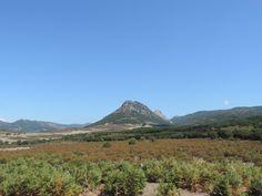 Im Osten von Sardinien, Fahrt durch die Berge, traumhaft schöne Landschaft mit kurvigen Straßen.