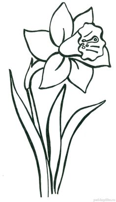 daffodil Diy Embroidery Flowers, Simple Embroidery Designs, Printable Flower Coloring Pages, Colouring Pages, Flower Drawing Tutorials, Flower Pattern Design, Flower Video, Art Drawings For Kids, Applique Patterns