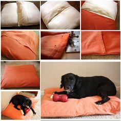 DIY Cozy Dog Bed