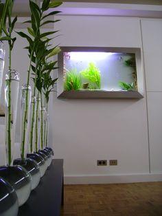 Entreprise spécialisé dans la fabrication d'aquarium tableau sur mesure