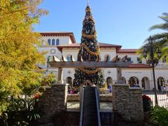 Tis the Season to see how many different #Disney trees you can photograph!  I started with this new one at Disney Springs!