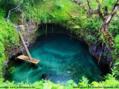 To Sua Ocean Trench - a lake on the Island Samoa - Watch http://destinations-for-travelers.blogspot.com.br/2013/05/to-sua-ocean-trench-lotofaga-upolu-island-samoa.html #samoa #lake