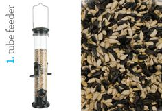 Winter Bird Feeding: A world-renowned ornithologist shows how, with the right combination of feeder and food, your backyard can be a refuge for birds and a stage for watching their colorful antics.  [By Steve Kress/Photographs courtesy of Woodlink, LTD and Red River Commodities]