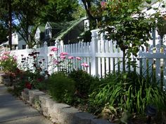 Vinyl fence with landscaping in front, high maintenance but nice!