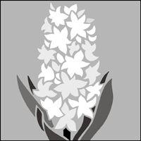 The Hyacinth  stencil - price £17.95