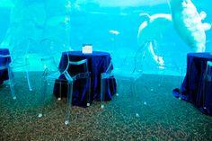 Vancouver Aquarium - Imagine having marine animals as your backdrop at your event! Amazing. #Vancouver #corporate #adminprofs