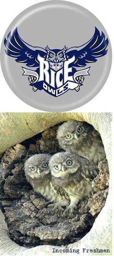 Rice University Owls - incoming freshmen Rice University, Freshman, Owls, Houston, Texas, Football, Soccer, Futbol, Owl