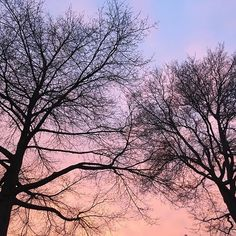 Wonderful evening walk with a painted sky. Oh what a night! #photographerscoach #coachandrepeat #20hourworkweek #growyourincome #noworkatweekends #earnmoneywithphotography