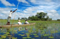 okavango delta, botswana  (this article said the area can be safaried via elephant back. i would SO love to do that!)