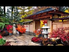 The Beauty of The Japanese Gardens