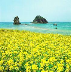 제주도 - 한국 여행, 모바일가이드