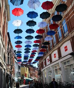 #leuven #umbrellas