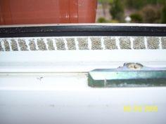 Klebereste von Fliegengitter entfernen | Frag Mutti