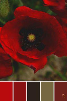 ZJ Colour Palette 424 #colourpalette #colourinspiration