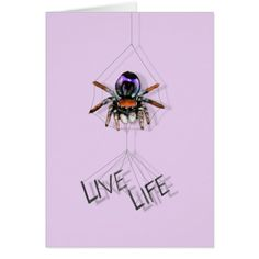 Shop Adorable nor Weird Peacock Spiders created by iArtLife. Spider Card, Custom Greeting Cards, Spiders, Good Day, White Envelopes, Peacock, Weird, Portrait, Funny