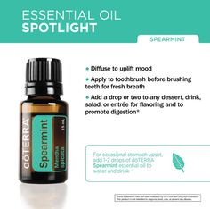 Spearmint Essential Oil Spotlight