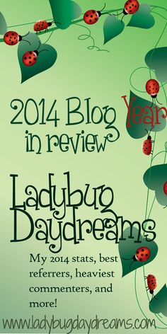 2014 year in review on Ladybug Daydreams/Simplicity Breeds Happiness