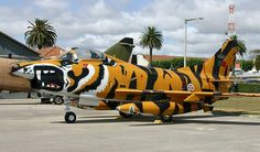 Portuguese Air Force FiatG91, painted in a beautiful NATO Tiger Meet livery