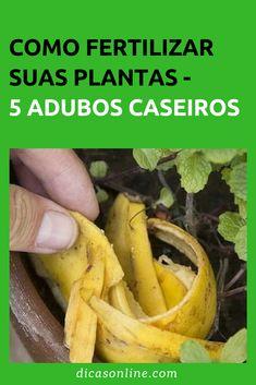 Reuse These 5 Ingredients To Make Homemade Fertilizer For Your Plants Eco Garden, Fruit Garden, Tropical Garden, Home Grown Vegetables, Growing Vegetables, Garden Veranda Ideas, Plantas Bonsai, Vegetable Garden Planning, Growing Greens