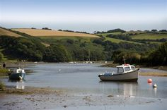 The estuary at Aveton Gifford is 5 minutes' walk away and fabulous for all manner of pursuits.