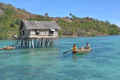 Bajau Laut Gathering Wood Bodgaya