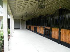 ten 12x14' horse stalls