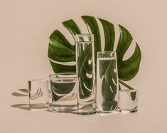 suzanne saroff distorts food and flowers as if real digital glitches