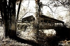 Strongsville Covered Bridge on Whitney