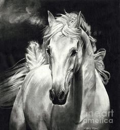 Vanessa Anderson -Wind Horse