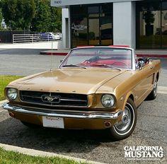 1965 Mustang Convertible Prairie Bronze