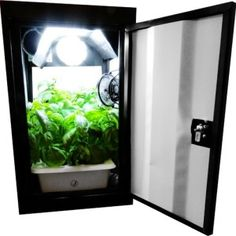 Grow boxes are one of the best ways to start growing weed indoors. Here are the best grow boxes for growing weed. Hydroponic Grow Systems, Hydroponics System, Hydroponic Supplies, Growing Weed, Cannabis Growing, Grow Cabinet, Grow Boxes, Grow Kit, Grow Room