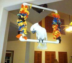 ♥ Pet Bird DIY Ideas ♥ Fun easy diy fuzzy bird toy swing perch pvc