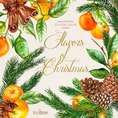 Christmas Wreath and Bouquets. Tangerines. Pine. Сinnamon. Merry Christmas and New Year decoration, Hand painted clipart. DIY invitations