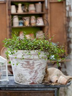 Make your new pots look old.