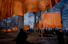 """Alex Webb - USA. New York City. February 2005. Central Park. """"The Gates"""" by Christo and Jean-Claude."""