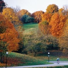 Cherokee Park in Louisville, KY