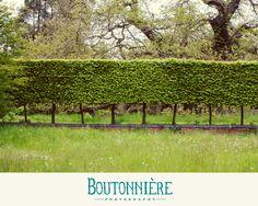 A lovely day at Doddington Hall #boutonnierephotography
