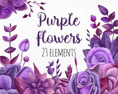 Purple flowers clip art Floral watercolor clipart by RemiPapers