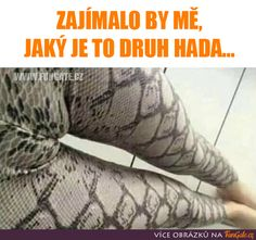 Zajímalo by mě, jaký to je druh hada. Freaky Relationship Goals Videos, Actrices Sexy, Sexy Tattoos For Girls, Girl Memes, Death Metal, Butt Workout, Lol, Bicycle Engine, Ritika Singh