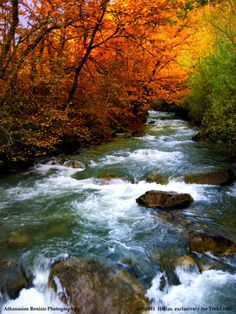 The sound and beauty of flowing streams