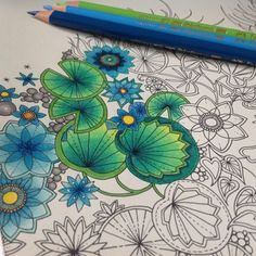From Johanna Basford's colouring gallery Secret Garden Coloring Book, Coloring Book Art, Leaf Coloring, Colouring Pages, Adult Coloring Pages, Colored Pencil Tutorial, Colored Pencil Techniques, Colored Pencil Artwork, Color Pencil Art