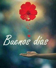 Buenos Días Para Ti archivos - Imagenes Romanticas